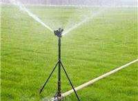 灌溉工程实例
