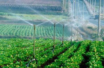 喷灌设备大田应用工程